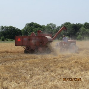 2016 Wheat Harvest